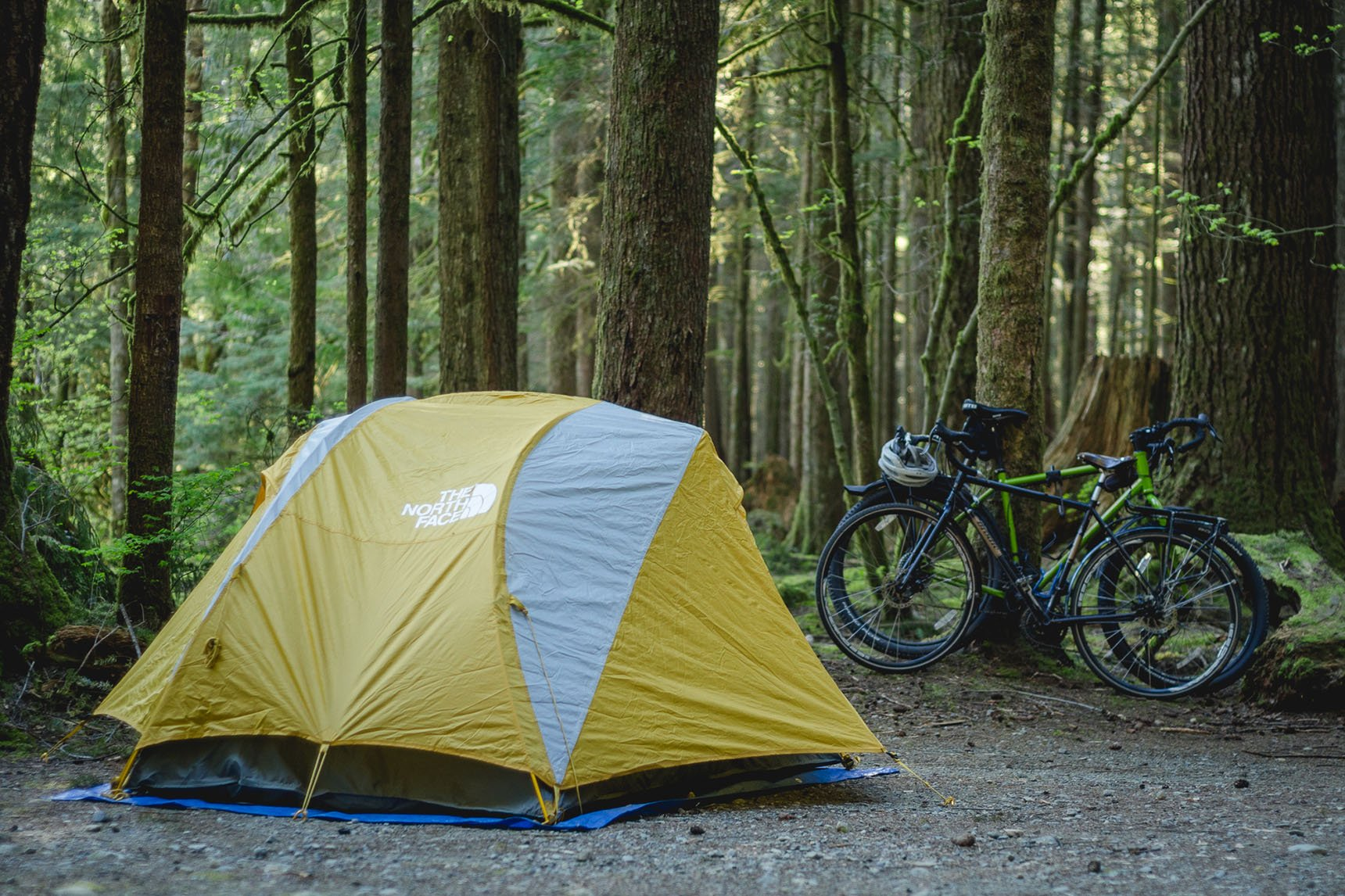 Camping in Gold Creek Campground.