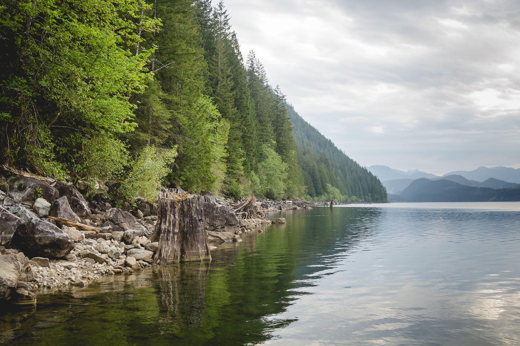 Alouette Lake in the morning.