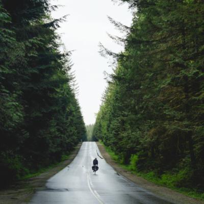 Riding into Golden Ears Provincial Park.