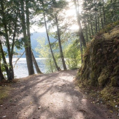 The dreamy unnamed road running along the north side of Cameron Lake.