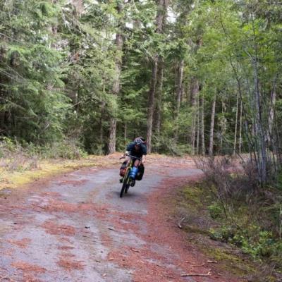 Exploring old logging roads off the Port Alberni Pass.