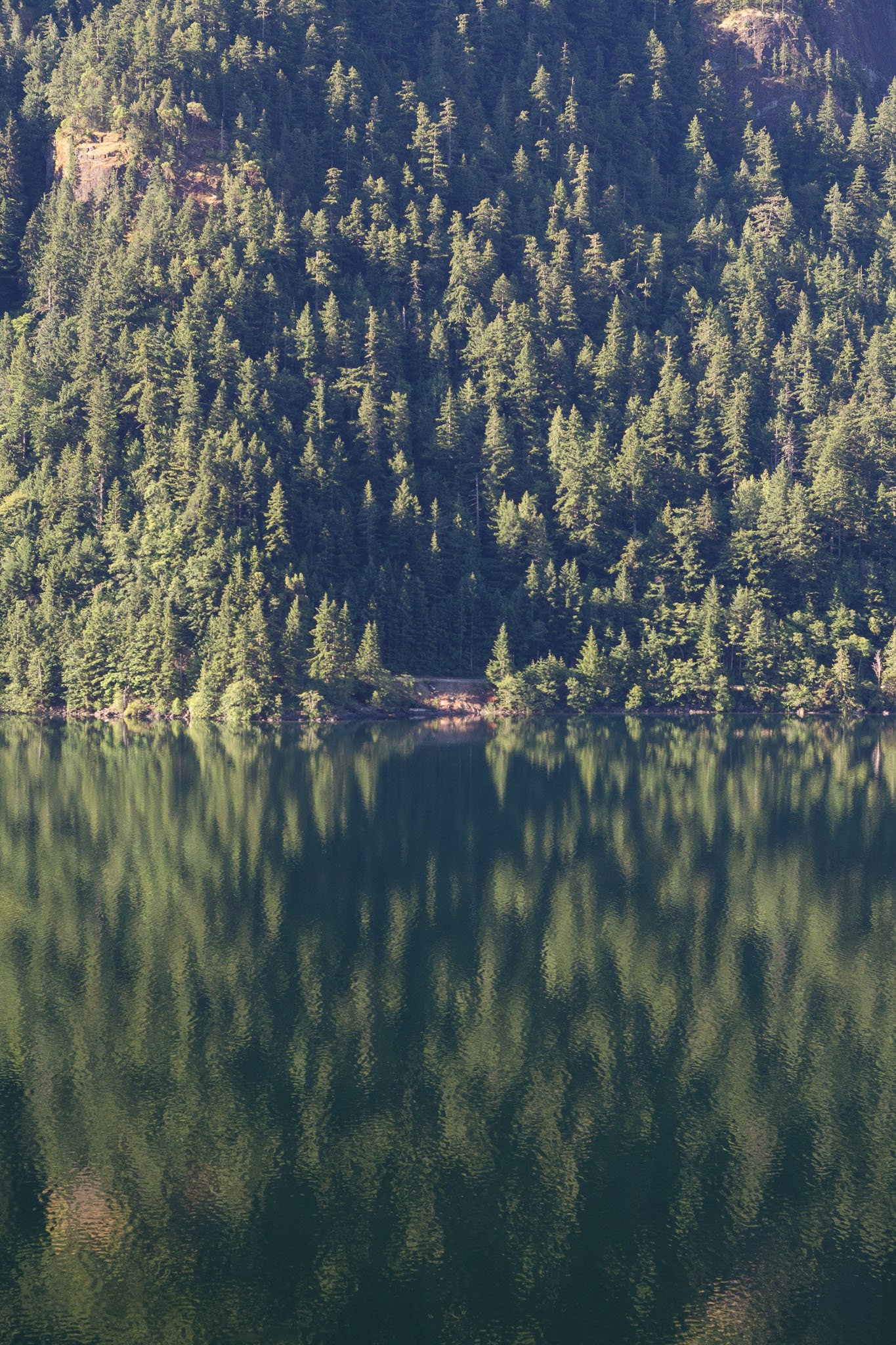 Cameron Lake.