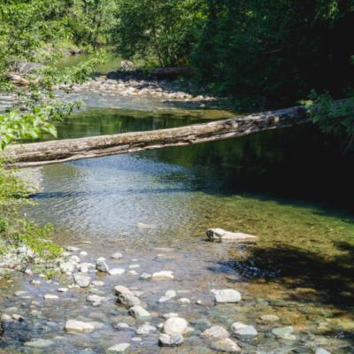 Little Qualicum River.
