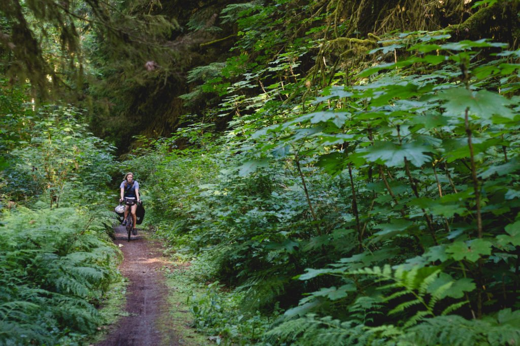 Cowichan Valley Trail.